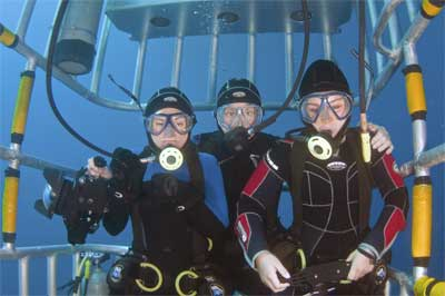 Muller Family in shark cage