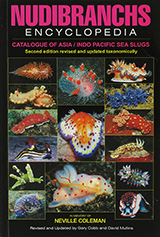 Nudibranchs Encyclopedia - Asia/Indo-Pacific