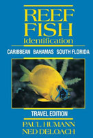 Travel Edition of Reef Fish Identification: Caribbean, Bahamas, South Florida.