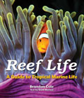 Reef Life: A Must Have Guide to Tropical Marine Life