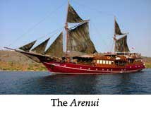 The Arenui