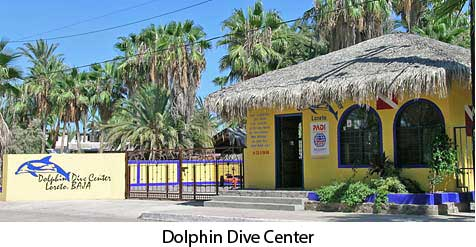 Dolphin Dive Center