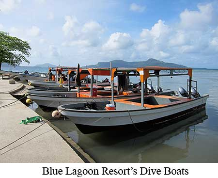 Blue Lagoon Resort's Dive Boats