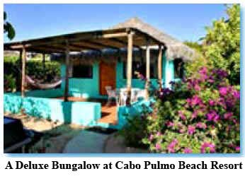 A Deluxe Bungalow at Cabo Pulmo Beach Resort