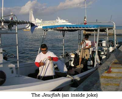 The Jewfish (an inside joke)