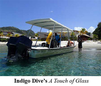 Indigo Dive's A Touch of Glass