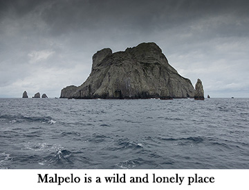 Malpelo is a wild and lonely place