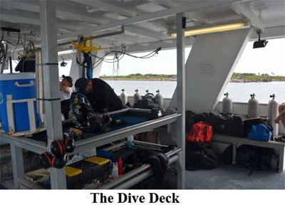 The Dive Deck