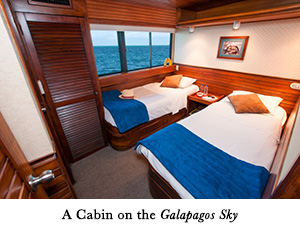 A Cabin on the Galapagos Sky