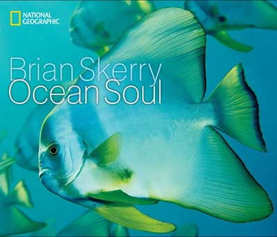 Our Book Pick This Month: Ocean Soul