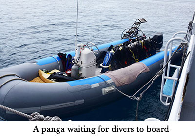 A panga waiting for divers to board