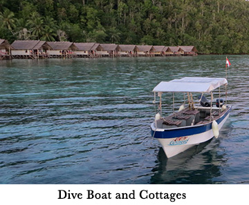 Dive Boat and Cottages