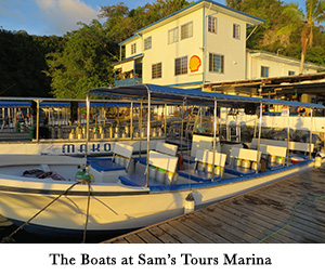 The Boats at Sam's Tours Marina