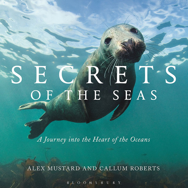 Secrets of the Seas by Alex Mustard and Callum Roberts