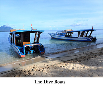Siladen Resort Dive Boats