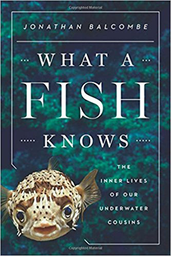 Book: What a Fish Knows by Jonathan Balcombe