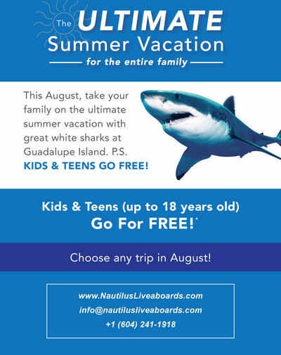 Nautilus Family Shark vacation