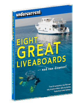 Eight Great Liveaboards -- and one disaster!